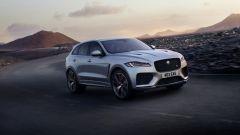 Jaguar F-Pace SVR: scatto da... leopardo - Immagine: 15