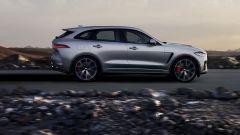 Jaguar F-Pace SVR: scatto da... leopardo - Immagine: 17