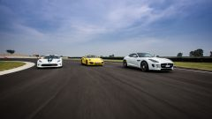 SRT Viper vs Porsche 911 Turbo vs Jaguar F-Type R - Immagine: 8