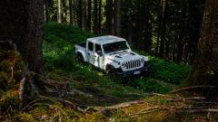 Jeep Gladiator foresta