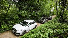 Jeep Renegade Trailhawk, Audi Q2 e Mini Countryman in fuoristrada