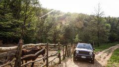 Jeep Renegade Trailhawk: come va in fuoristrada