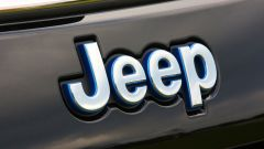Jeep, what else?