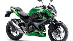 Kawasaki Demo Ride Tour - Immagine: 4