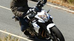 Kawasaki ER-6n 2012 - Immagine: 2