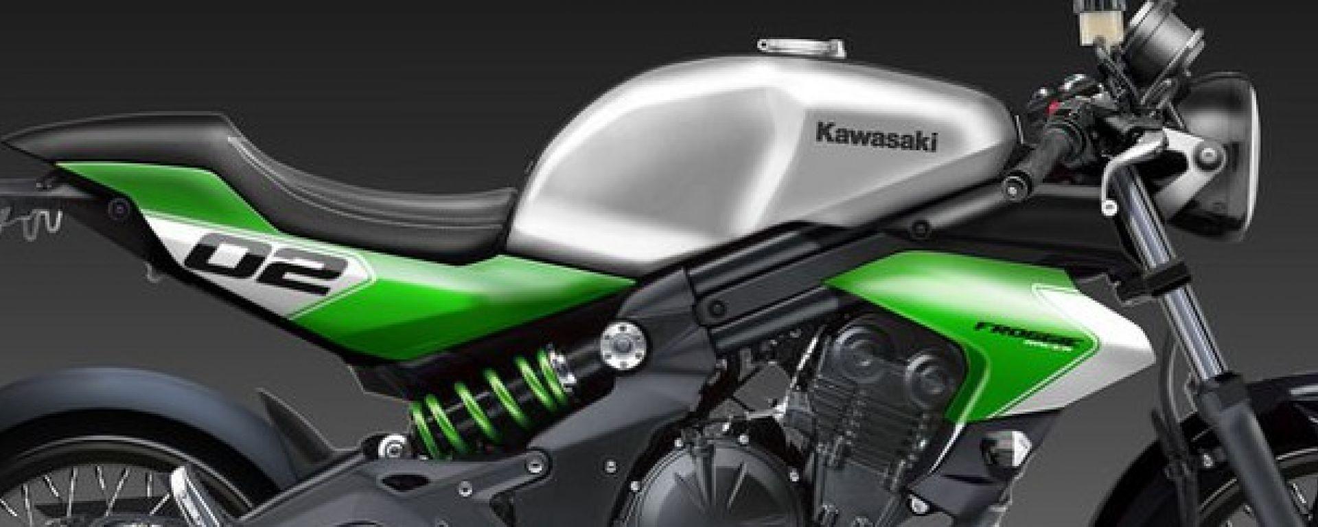 Kawasaki ER-6n Froggie e Koyote by Oberdan Bezzi