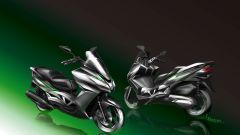 Kawasaki J300 - Immagine: 24