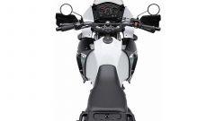 Kawasaki KLR650 2014 - Immagine: 9