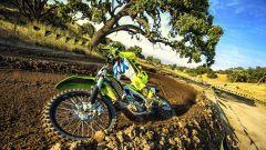 Kawasaki KX250F 2018: si affina per vincere ancora - Immagine: 1