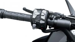 Kawasaki Ninja 1000SX 2020: il blocchetto sinistro