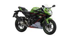 Kawasaki Ninja 125 2021: visuale di 3/4 anteriore