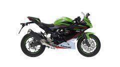 Kawasaki Ninja 125 2021: visuale laterale