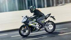 Kawasaki Ninja 125, a EICMA 2018 per studiare da grandi - Immagine: 6