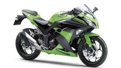 Kawasaki Ninja 250R 2013 - Immagine: 76