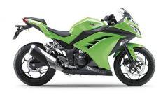 Kawasaki Ninja 250R 2013 - Immagine: 57