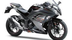 Kawasaki Ninja 250R 2013 - Immagine: 47