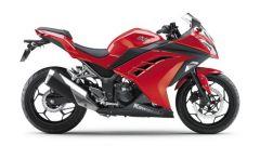 Kawasaki Ninja 250R 2013 - Immagine: 43
