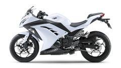 Kawasaki Ninja 250R 2013 - Immagine: 42