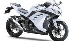Kawasaki Ninja 250R 2013 - Immagine: 59
