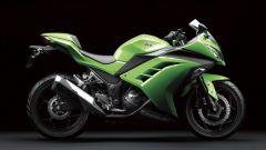 Kawasaki Ninja 250R 2013 - Immagine: 75