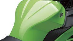 Kawasaki Ninja 250R 2013 - Immagine: 66