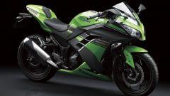 Kawasaki Ninja 250R 2013 - Immagine: 8