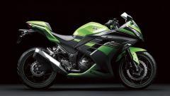 Kawasaki Ninja 250R 2013 - Immagine: 7