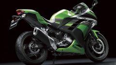 Kawasaki Ninja 250R 2013 - Immagine: 2