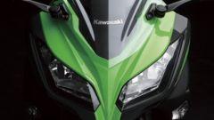 Kawasaki Ninja 250R 2013 - Immagine: 6