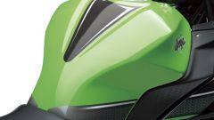 Kawasaki Ninja 250R 2013 - Immagine: 38