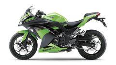 Kawasaki Ninja 250R 2013 - Immagine: 28