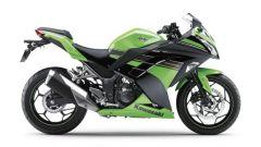 Kawasaki Ninja 250R 2013 - Immagine: 27