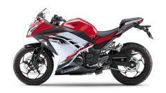 Kawasaki Ninja 250R 2013 - Immagine: 24