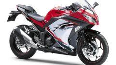 Kawasaki Ninja 250R 2013 - Immagine: 23