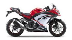 Kawasaki Ninja 250R 2013 - Immagine: 25