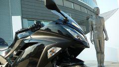Kawasaki Ninja 300 - Immagine: 19