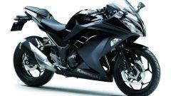Kawasaki Ninja 300 - Immagine: 28