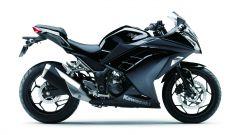 Kawasaki Ninja 300 - Immagine: 27