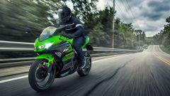 Kawasaki Ninja 400: ecco la moto per il trofeo MotoEstate - Immagine: 6