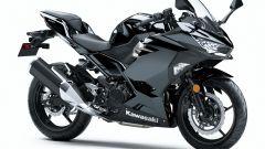 Kawasaki Ninja 400: ecco la moto per il trofeo MotoEstate - Immagine: 22