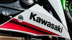 Kawasaki Ninja 650 2021: sportiva per tutti. La prova - Immagine: 16