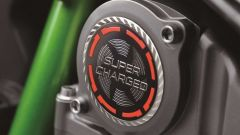 Kawasaki Ninja H2 2019: i nuovi badge distintivi