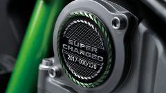 Kawasaki Ninja H2 Carbon, la placca al motore