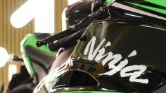 Kawasaki Ninja ZX-10R 2016, la prova - Immagine: 12