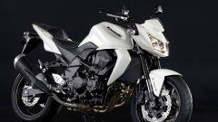 Kawasaki nuovi colori 2011 - Immagine: 18