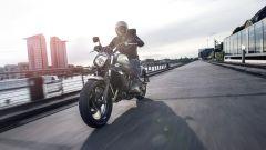 Kawasaki: nuovi colori per ER-6n/f, Versys 650 e Vulcan S - Immagine: 31