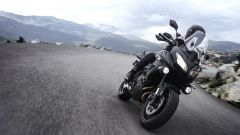 Kawasaki: nuovi colori per ER-6n/f, Versys 650 e Vulcan S - Immagine: 26