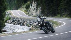 Kawasaki: nuovi colori per ER-6n/f, Versys 650 e Vulcan S - Immagine: 14