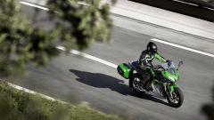 Kawasaki: nuovi colori per ER-6n/f, Versys 650 e Vulcan S - Immagine: 6