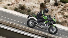 Kawasaki: nuovi colori per ER-6n/f, Versys 650 e Vulcan S - Immagine: 9